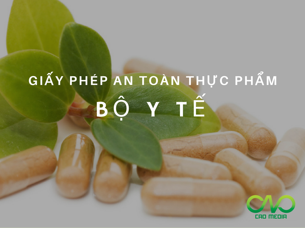 giay-phep-ve-sinh-an-toan-thuc-pham-tai-bo-y-te (1)