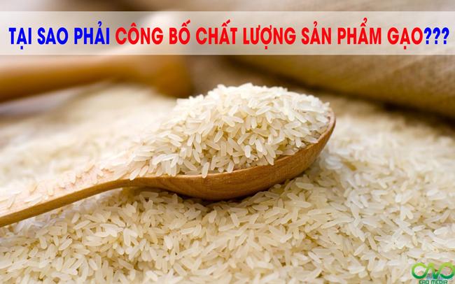 Công bố tiêu chuẩn chất lượng cơ sở gạo